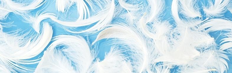 STC, 羽绒和羽毛测试